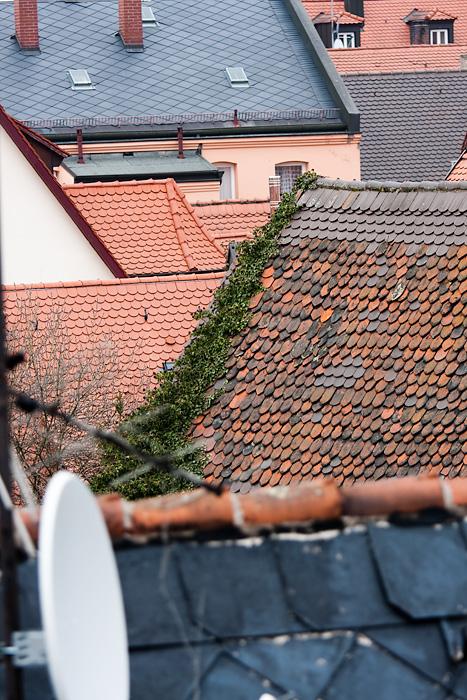 Fürther Dächer