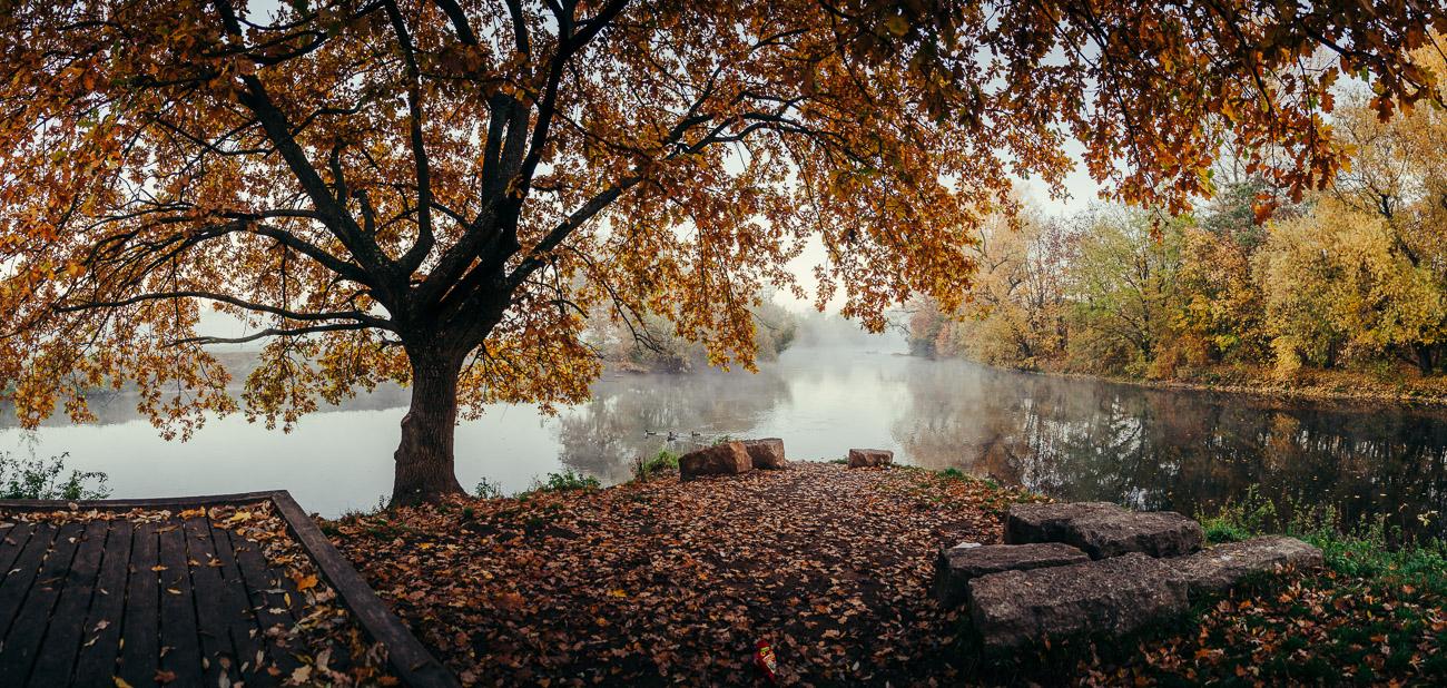 Fürth Nebel Herbst