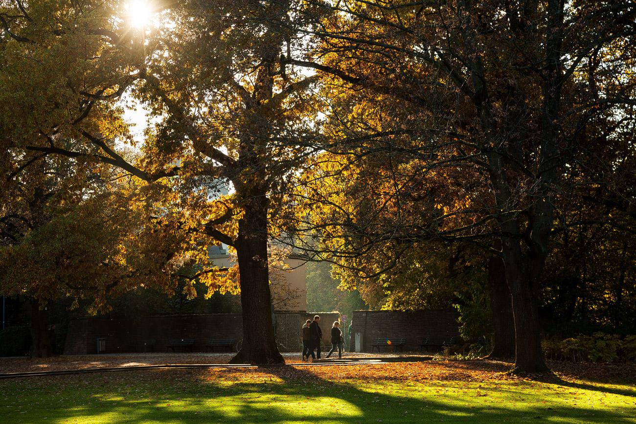 Herbst im Stadtpark Fürth