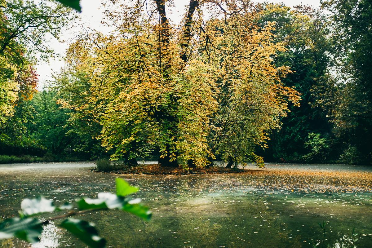 Stadtpark Fürth Weiher
