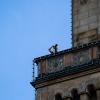 Fotograf auf Rathaus