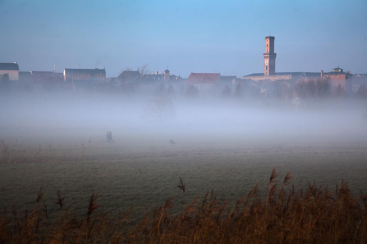 Wiesengrund Fürth – Nebel am Morgen