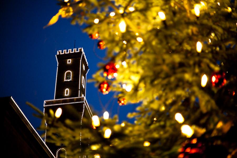 Weihnachtsbaum vor dem Fürther Rathaus