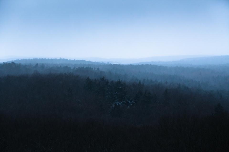 Fürther Stadtwald