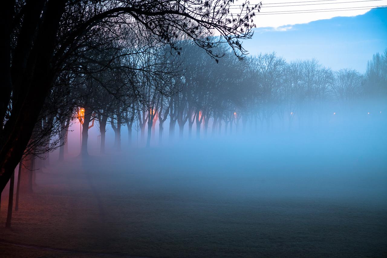 Der Fürther Wiesengrund im Nebel