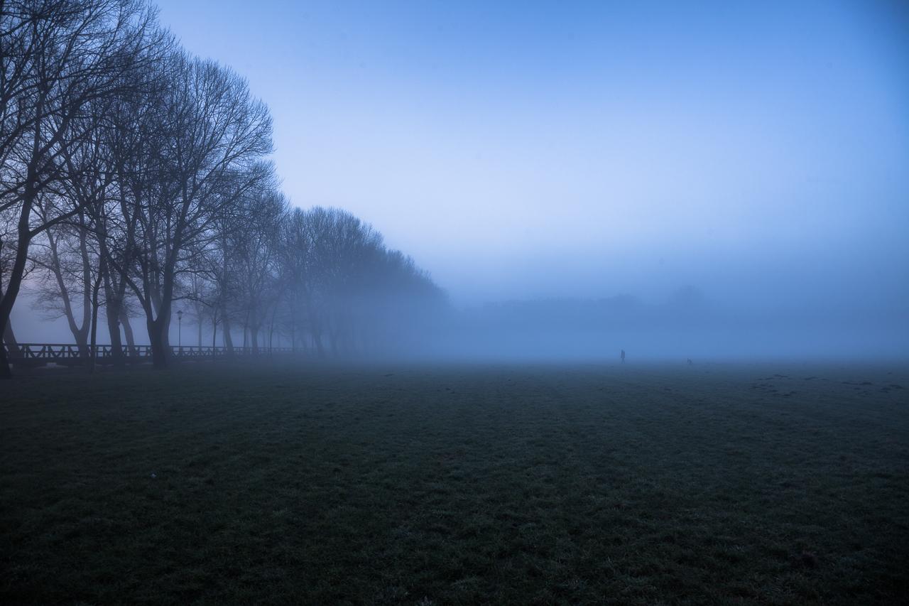 Fürth Wiesengrund Nebel Pappelsteig