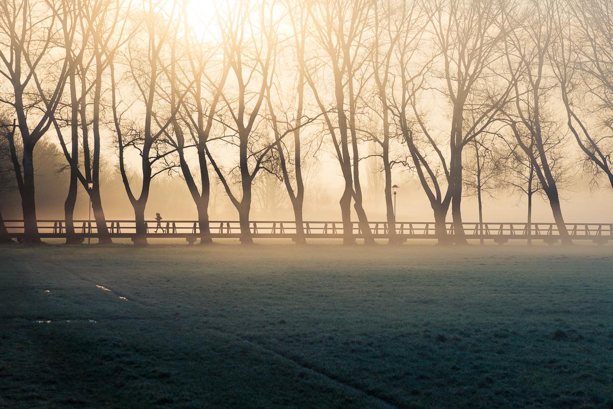 Joggerin am Pappelsteig im Fürther Wiesengrund mit Morgennebel