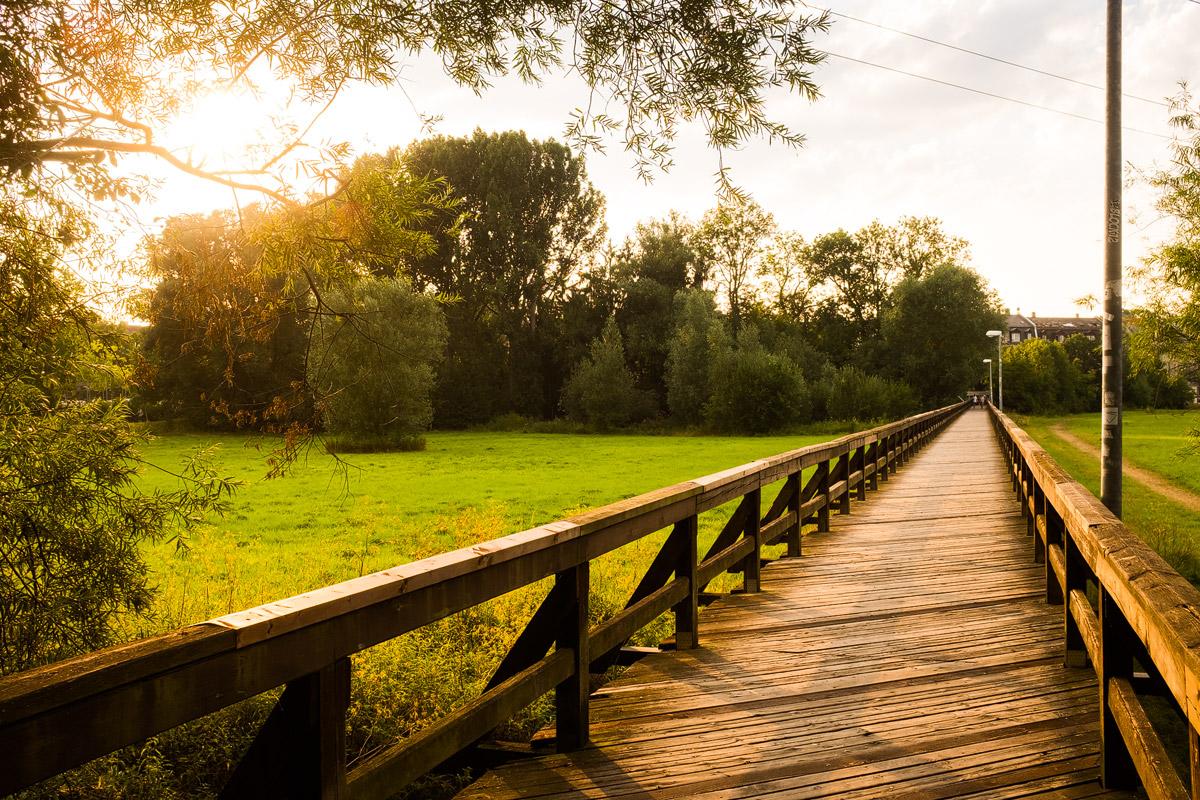 Hardsteg im Fürther Wiesengrund bei Sonnenuntergang