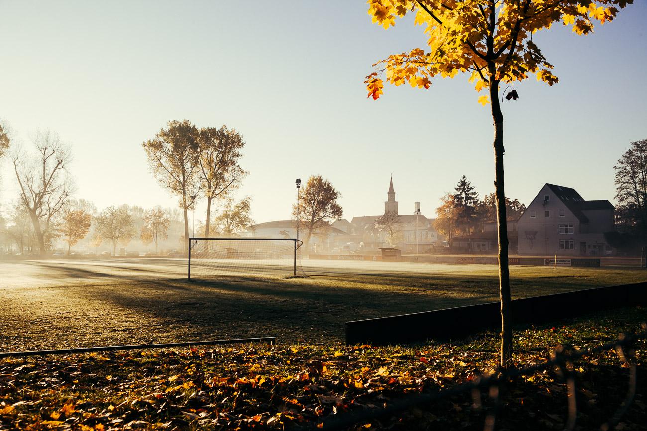 Morgennebel über Fußballfelder im Wiesengrund