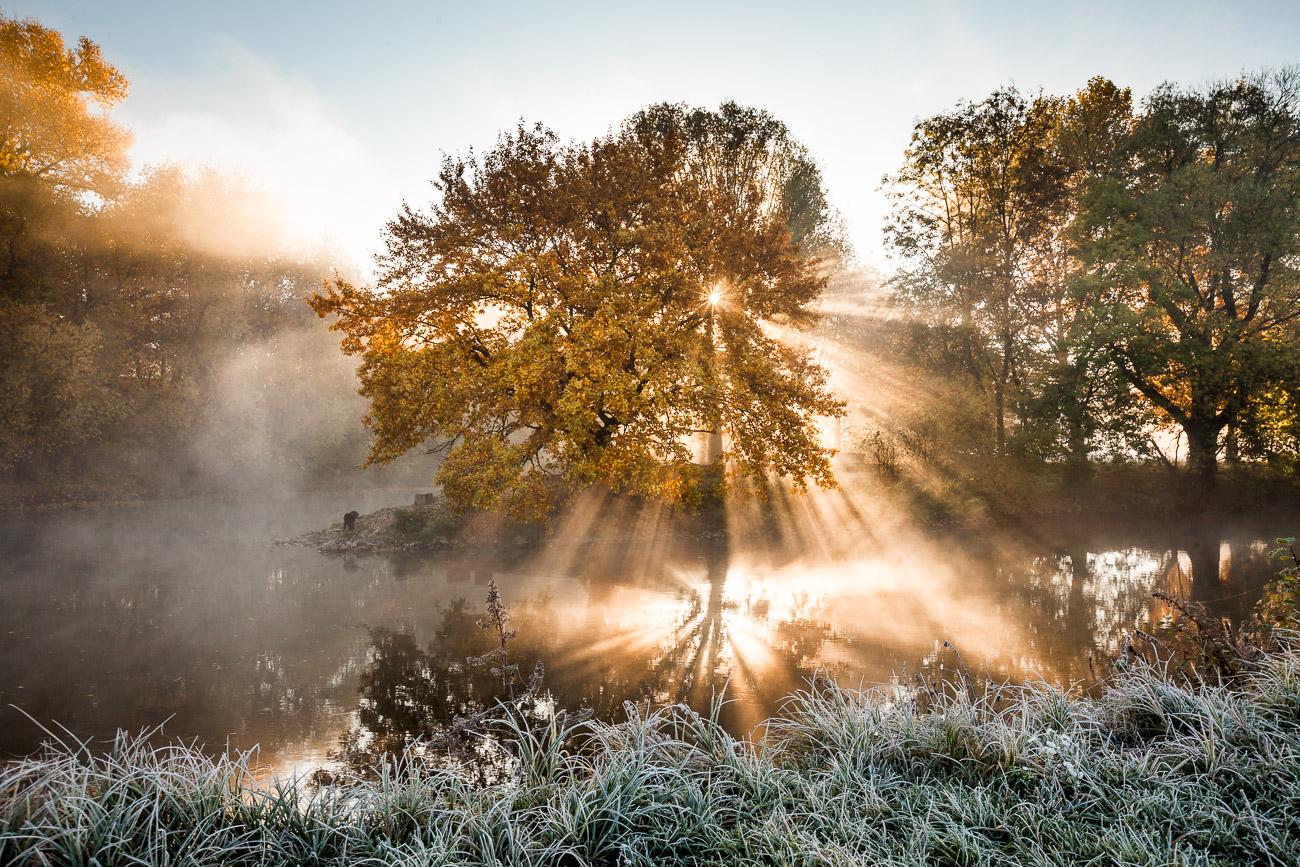 Flussdreieck Fürth im Nebel