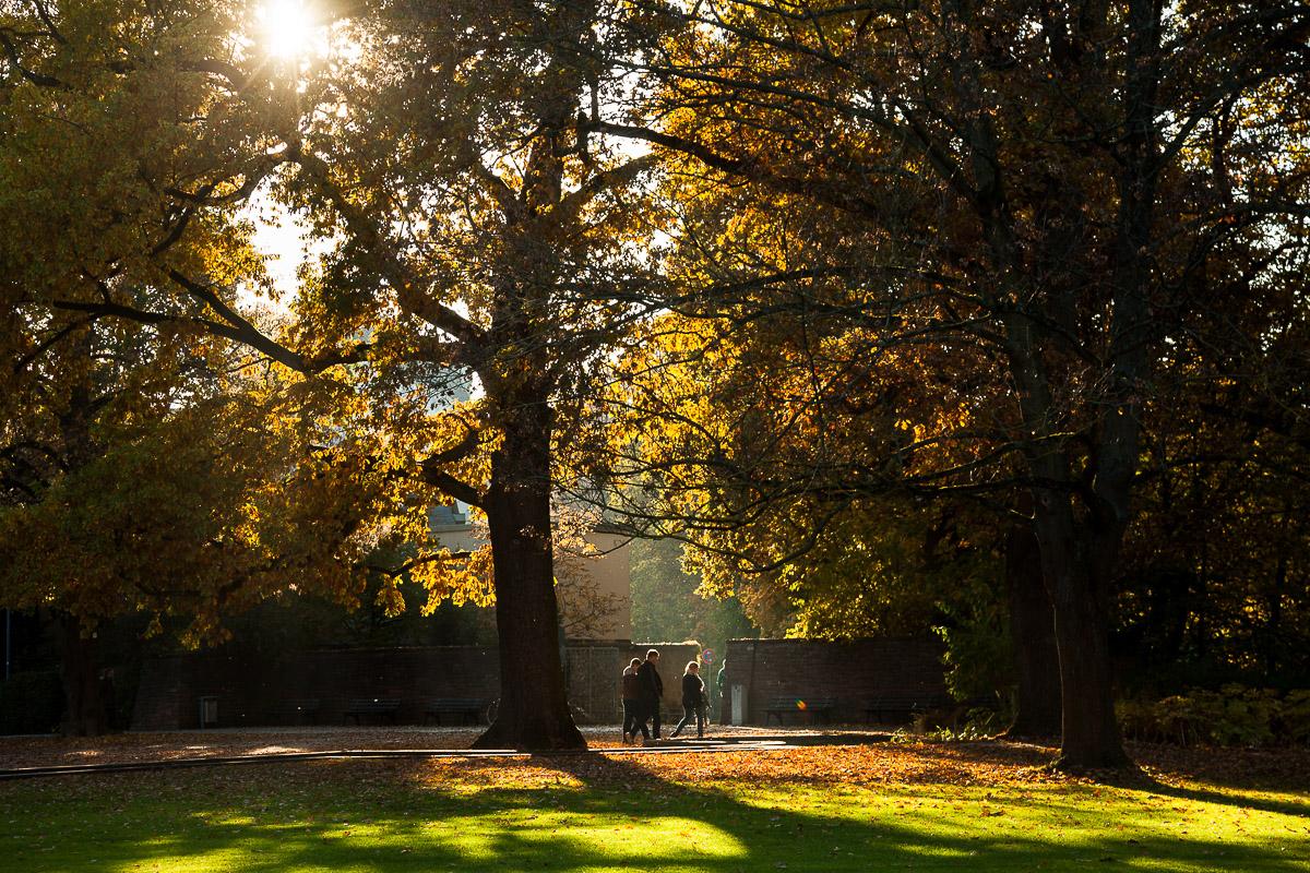 Stadtpark Fürth im Herbst