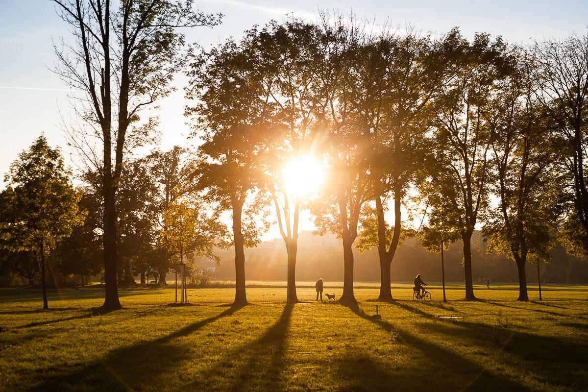 Herbstsonne im Fürther Wiesengrund