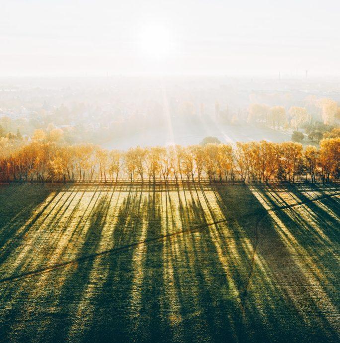 Pappelsteig Fürth im Herbst